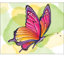 Watercolor Painting: Beautiful Butterfly