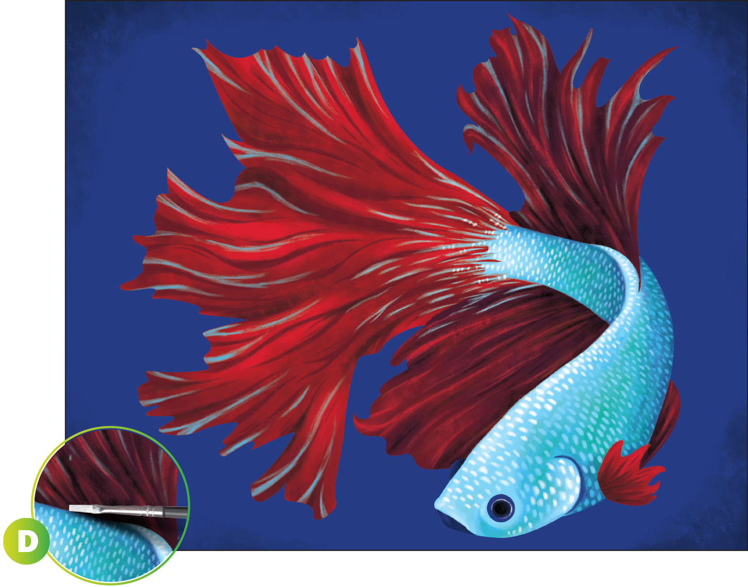 Betta fish acrylic painting for Betta fish painting