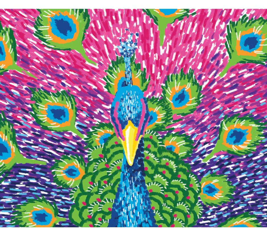 Oil Pastels: Brilliant Peacock