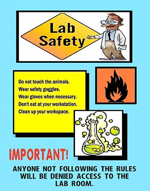 Make A Science Fair Project About Science Lab Safety