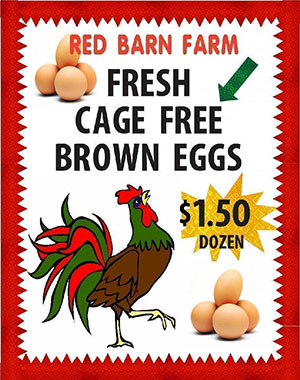 Create A Poster About Farm Fresh Eggs Business Poster Ideas