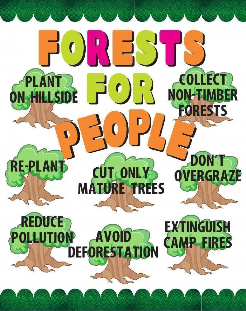 Make A Forest For People Poster Conservation