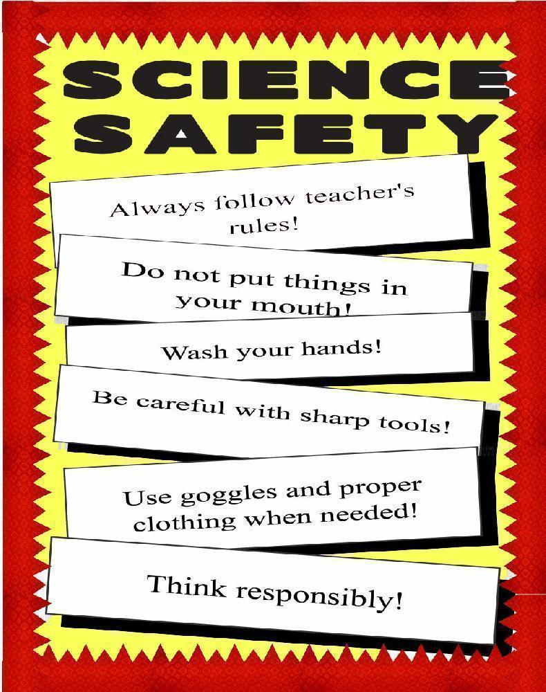 safety science poster posters rules health project fair making artskills zoom