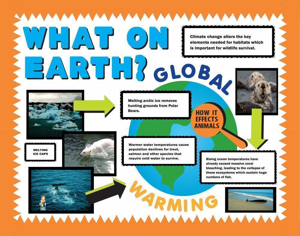 Make a Science Fair Project | Poster Ideas - Global Warming Project ...