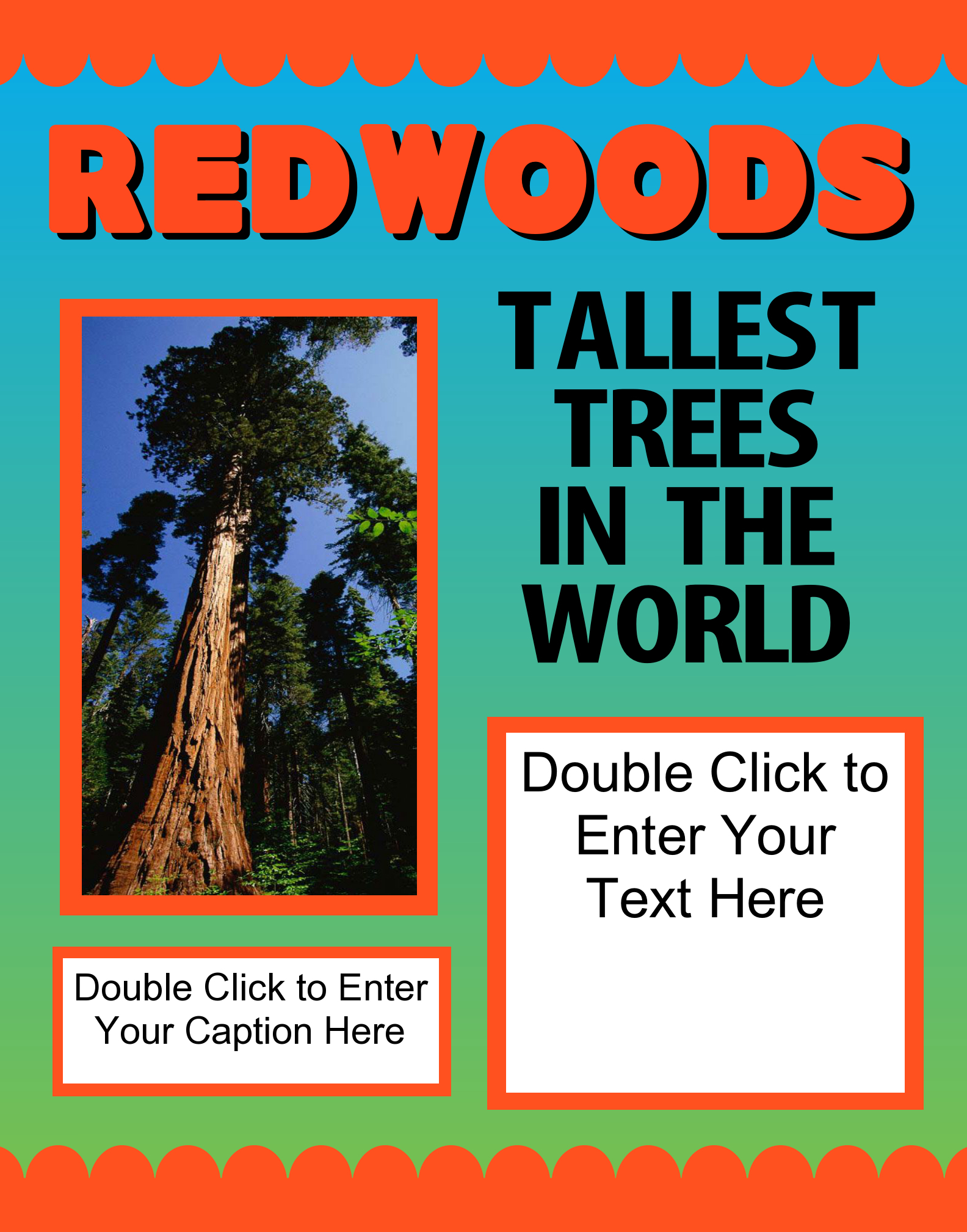 make a science fair project about the tallest tree