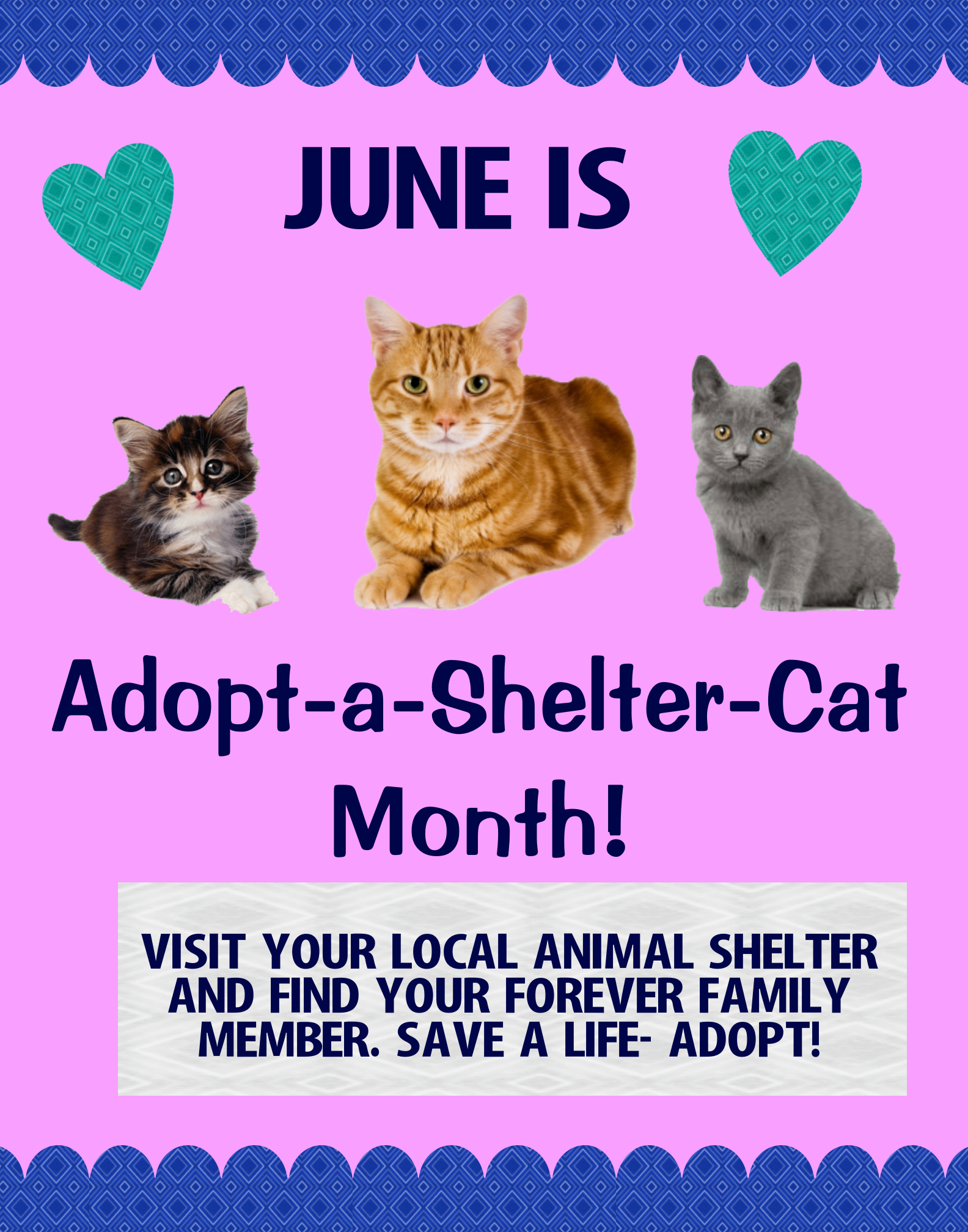 Make A Poster About Adopting Pets Cat Poster Ideas