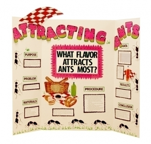 Make A Science Fair Project Poster Ideas Attracting