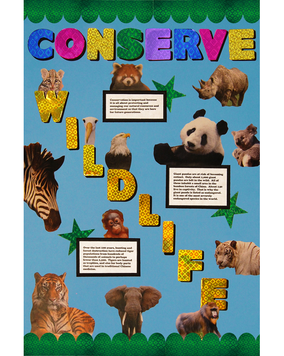 Make a Conserve Wildlife Poster : School Project Poster Ideas