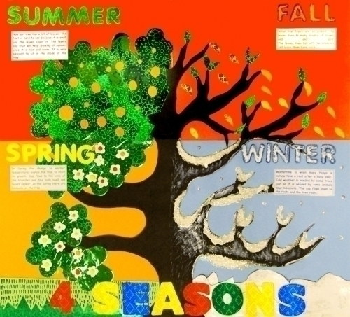 Make A Science Fair Project Poster Ideas Four Seasons Nature