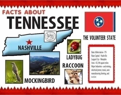 ... Poster About Facts Of Tennessee Poster | School Project Poster Ideas